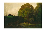 A Pond in the Morvan, 1869 Giclee Print by Charles Francois Daubigny