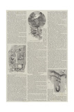 Cassiobury Giclee Print by Charles Auguste Loye