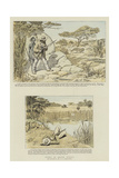 Sport in South Africa Giclee Print by Charles Edwin Fripp