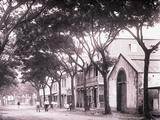 Papeetee Street Scene. Tahiti, Late 1800s Photographic Print by Charles Gustave Spitz