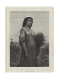 Ruth Giclee Print by Charles Landelle