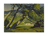Trees, Provence, 1912 Giclee Print by Derwent Lees