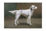 Portrait of a Dog, 1885 Giclee Print by Charles Van Den Eycken