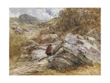 Mountain Pass at Bettws-Y-Coed, 1851 Giclee Print by David Cox