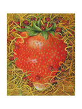 Strawberry in Straw, 1998 Giclee Print by E.B. Watts