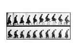 Motion Study, C.1872-1885 Giclee Print by Eadweard Muybridge