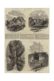 Excursions of the British Association Giclee Print by Edmund Morison Wimperis