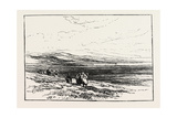A Scotch Moor Giclee Print by Edmund Morison Wimperis