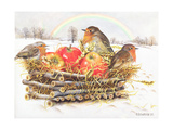 Robins with Apples, 1997 Lámina giclée por E.B. Watts