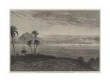 Panama Port Giclee Print by Eduard Hildebrandt