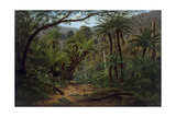 Ferntree Gully in the Dandenong Ranges, 1857 Giclee Print by Eugen von Guerard