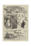 Sketches of the Camp at Wimbledon Giclee Print by Felix Regamey