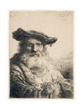 Old Man with Flowing Beard, 1642 Giclee Print by Ferdinand Bol