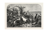 Salon of 1855, Goats, 1855 Giclee Print by Filippo Palizzi