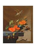 A Bouquet of Roses, Morning Glory and Hazelnuts with Grasshoppers, Stag Beetle and Lizard Giclee Print by Elias Van Den Broeck