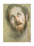 Study for the Head of Christ Giclee Print by Federico Fiori Barocci