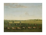 Sir Charles Warre Malet's String of Racehorses at Exercise Giclee Print by Francis Sartorius
