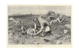 A Non-Combatant Hero at the Front a Surgeon at Work in the Firing Line Giclee Print by Frank Dadd