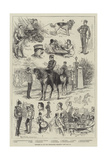 Sketches of the 66th (Berkshire) Regiment Giclee Print by Frank Feller