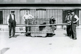 A Black Leopard Being Transported in a Cage by Keepers at London Zoo, June 1922 Photographic Print by Frederick William Bond