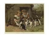Pups Giclee Print by George Augustus Holmes
