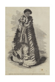 Paratene Maioha, a Chief of Wangaroa, Wearing the Parawai or Dog'S-Skin Robe Giclee Print by George French Angas