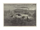 The Months, September Impression giclée par George Bouverie Goddard