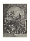 Harold Giclee Print by George Lance