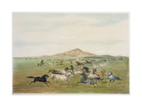 Wild Horses at Play Giclee Print by George Catlin