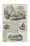 Roman Villa Discovered in Lower Thames-Street Giclee Print by Frederick William Fairholt