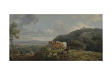 Morning: Landscape with Mares and Sheep, C.1770-80 Giclee Print by George the Elder Barret