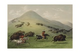 The Buffalo Hunt Giclee Print by George Catlin