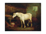 An Old Grey Mare at a Manger Giclee Print by George Morland
