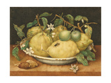 Still Life with a Bowl of Citrons, C.1640 Giclee Print by Giovanna Garzoni
