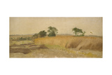 Study of a Cornfield Giclee Print by George Hemming Mason