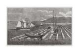 Canadian Lumber Trade, a Raft on the St Lawrence Giclee Print by George Henry Andrews