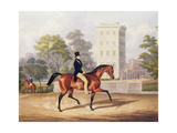 The Marquis of Anglesea on Horseback in Hyde Park, in His 80th Year, Engraved by J. Harris, 1847 Giclee Print by George Henry Laporte