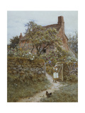 The Black Kitten Giclee Print by Helen Allingham