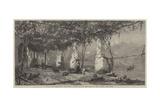 Under the Vines, Italy Giclee Print by Harry John Johnson