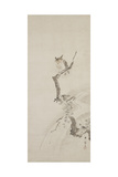 One Owl Perched in a Tree, C. 1710 Giclee Print by Hanabusa Itcho