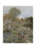 A Garden in Spring Giclee Print by Helen Allingham