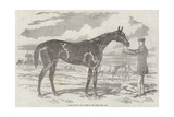 Blink Bonny, the Winner of the Derby and Oaks Giclee Print by Harry Hall