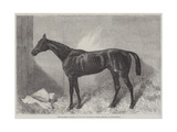The Marquis, Winner of the Two Thousand Guineas Stakes at Newmarket Giclee Print by Harry Hall