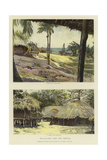 Nyasaland and its People Giclee Print by Harry Hamilton Johnston