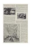 Blenheim Palace Illustrated Giclee Print by Henry Edward Tidmarsh