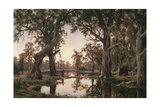 Evening Shadows, Backwater of the Murray, South Australia, 1880 Giclee Print by Henry James Johnstone