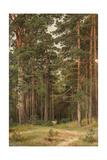 A Summer Day, Merikiul, 1895 Giclee Print by Ivan Ivanovich Shishkin