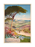 Poster Advertising Hyeres, France, 1900 Giclee Print by Hugo D' Alesi