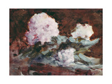 Rhododendrons Giclee Print by Hercules Brabazon Brabazon