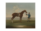 A Chestnut Horse (Possibly Old Partner) Held by a Groom Giclee Print by James Seymour